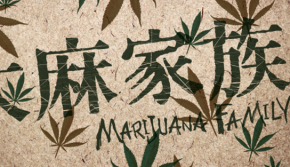 Marijuana Family